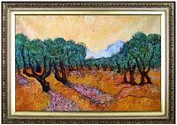 Framed Hand Painted Oil Painting Repro Van Gogh Olive Trees 24x36in