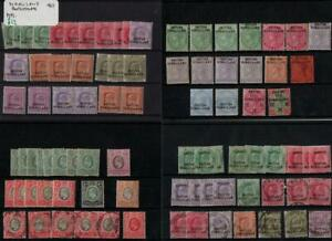 SOMALILAND: Collection of Used/Unused/Overprint Examples - 8 Stock Cards (38454)