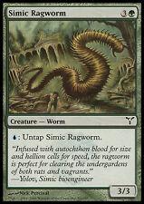 MTG 4x SIMIC RAGWORM - CENCIOVERME SIMIC - DIS - MAGIC
