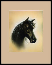 S. Poorter Porträt Pferd Poster Bild Kunstdruck im Alu Rahmen in schwarz 50x40cm