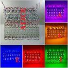 10-200x 5050 SMD 5LED White Red Green Module Light Lamp Waterproof Design 12V