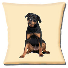 """YOUNG ROTTWEILER DOG BLACK TAN ON CREAM PHOTO PRINT 16"""" Pillow Cushion Cover"""