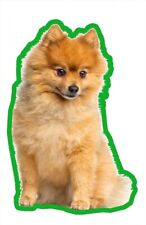 POMERANIAN AIR FRESHENERS X 2 FOR YOUR CAR HOME LONG LASTING FRAG