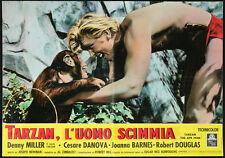 CINEMA-fotobusta TARZAN L'UOMO SCIMMIA denny miller