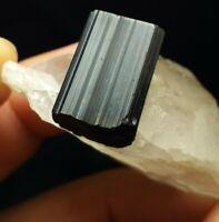 Quartz crystal with terminated black tourmaline having nice luster from Pak.