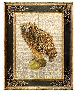 Buffy Fish Owl Art Print on Vintage Book Page Vintage Home Office Hanging Decor