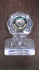Bear Award clear ice  acrylic trophy award mascot