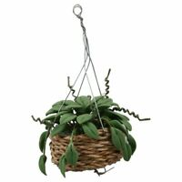 1X(1/12 Scale Dollhouse Miniature Hanging Plant Garden Accessory L4H5)