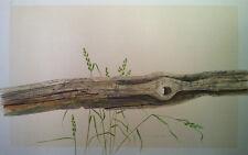Grant B. Hillman (Canadian) - Driftwood - Original Watercolour - 1978