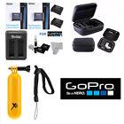 X2 AHDBT 401 Battery for GoPro HD Hero4 SILVER/BLACK  ACCESSORY SET  HARD CASE