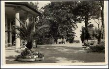 Kühlungsborn Ostseebad DDR AK 1959 Partie am Konzertgarten mit Palme gelaufen