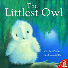 The Littlest Owl by Caroline Pitcher (Paperback) Book