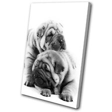 Animals Pug Puppies Dog SINGLE TOILE murale ART Photo Print