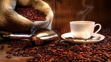 Jamaican Blue Mountain Dark Roast Coffee- 1lb