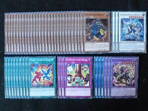 YU-GI-OH 49 CARD DINOWRESTLER DECK  *READY TO PLAY*