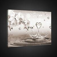 CANVAS LEINWANDBILD WANDBILDER Kunst Herz Wasser Tropfen Magia Blumen 2528 O1