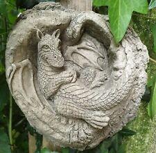 Dragon in the tree Felix