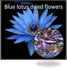 Blue Lotus dried flowers- Nymphaea Caerulea- 25 grams-From Thailand