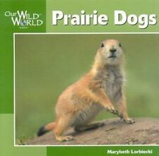 Prairie Dogs [Our Wild World]