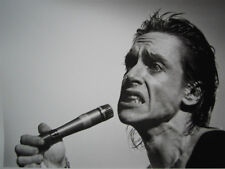 Iggy Pop UNSIGNED photo - K8252 - American singer-songwriter, musician and actor