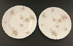"P H Leonard and Bavaria Porcelain Vienna Austria 9.25"" Plates Pink Roses (2)"