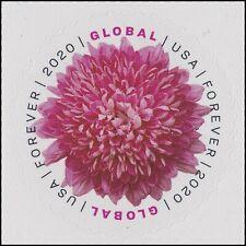 US 5460 Chrysanthemum global forever single (1 stamp) MNH 2020