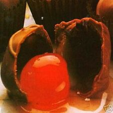 CHOCOLATE COVERED CHERRY ~ Fragrance OIL 1/2 oz bottle