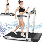 2-IN-1 Treadmill Electric Motorized Folding 3.25HP Running Jogging Machine Home)