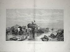 Stampa antica NORMANDIA la raccolta delle alghe in riva al mare 1885 Old print