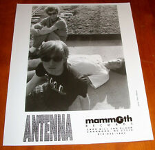 Rare Antenna 8x10 B&W Press Photo Mammoth Records Blake Babies