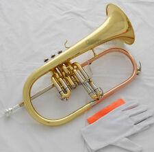 Professional new Flugelhorn ABALONE SHELL Keys Bb Flugel horn Monel Valves +Case