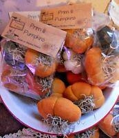 Set of 4 Primitive Handmade Pumpkin Bowl Filler Ornie Fall Halloween Homespun