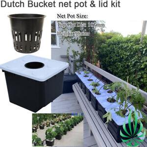 Hydroponic Bato Dutch Bucket Lid W/ Net Pot Kit Indoor Personal Farm Grow System