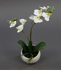 Orchidee Real Touch 28cm weiß in weißer Keramikvase DP Kunstblumen Kunstpflanzen