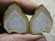 Bahia Agate Nodule Pair from Brazil, Rough Collector Specimen
