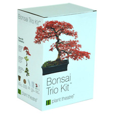 Plant Theatre Bonsai Trio Kit, 3 Distinctive Trees To Grow, Growing Plants, Seed