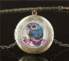 Beautiful Owl Photo Cabochon Glass Brass Locket Pendant Necklace