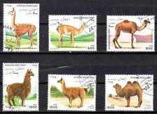 Animaux Camélidés Afghanistan (42) série complète 6 timbres oblitérés