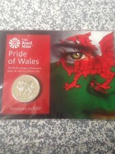 Royal Mint 2016 Pride of Wales £20 Pound Coin (999 Silver)