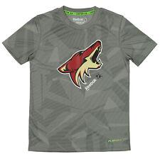 Reebok NHL Youth Arizona Coyotes Playdry Short Sleeve Frost Logo Tee, Grey