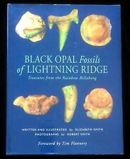 Black Opal Fossils of Lightning Ridge Dinosaurs Mystery Mammals Elizabeth Smith