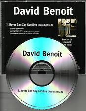 DAVID BENOIT Never Can Say Goodbye  w/ RARE EDIT PROMO DJ CD Single USA 2008