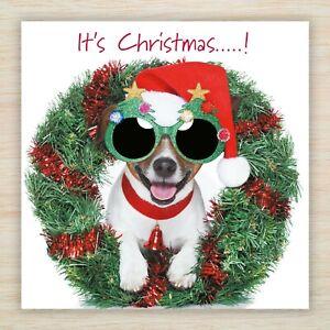 "Jack Russell Christmas Cards & Packs - ""It's Christmas!"" Terrier Dog - Freepost"