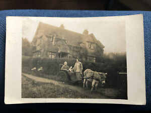 Bath Country House Donkey Dog & Gent In Open Small Carriage 1925