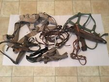 Old Vintage Equestrian Horse Gear Lot #2