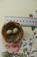 Grass NEST 6cm Wide x 2cm Deep with 2 BIRD EGGS 1.6cm x 1.3cm - Touch of Nature