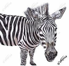 ORIGINAL Artist Signed Drawing of Grevy's Zebra Nature Wildlife Animals Stripes