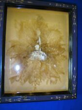 Antique Victorian seaweed shadow box Wreath black frame smaller