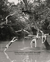 1922 Vintage Photo - Young Men in Swimsuits Diving Off Tree - Bizarre Odd Weird