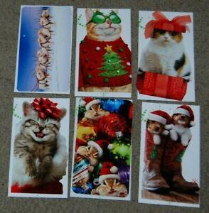 Lot 6 NEW Avanti All Christmas Funny Animal Tall Greeting Cards & Envelopes
